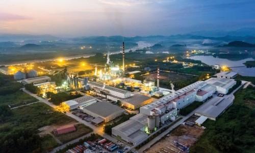 Công ty CP giấy An Hòa chú trọng bảo vệ môi trường trong sản xuất