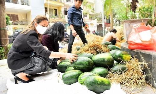"""Tập đoàn Geleximco """"giải cứu"""" 25 tấn dưa hấu cho nông dân Gia Lai"""