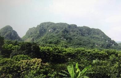 Núi Đầu Rồng, Cao Phong, Hoà Bình.